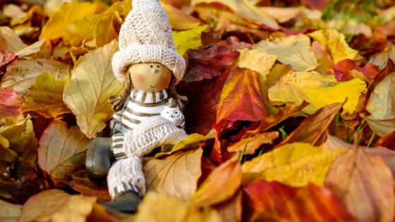Laub - Herbstlaub - Gartenlaub